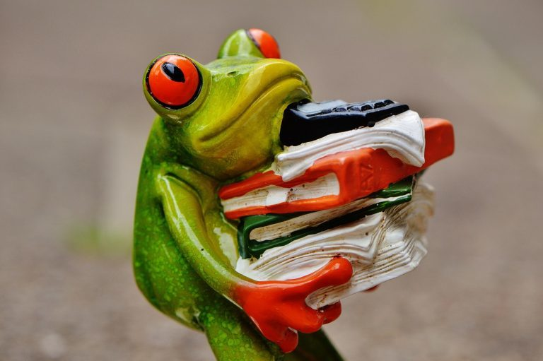 A porcelain frog holding a pile of books