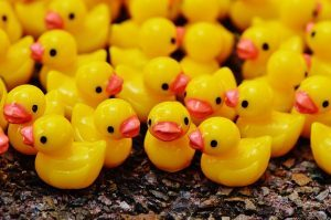 A group of rubber duckies with red beaks